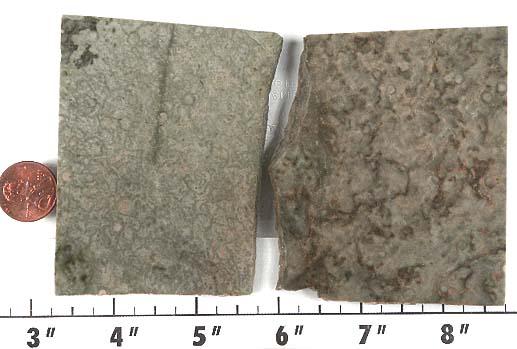 Serpentine Stone Slabs : Serpentine slabs
